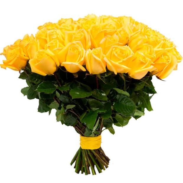 Розы Голландия желтые
