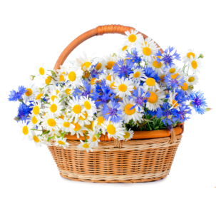 """Цветы в корзинке """"Весенний луг"""""""